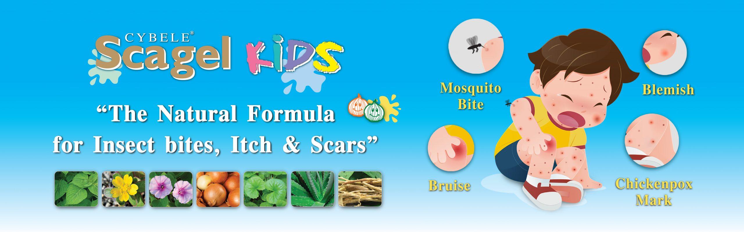Banner Scagel Kids 1600x500px (Eng)